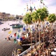 Anchor Rides Offers Captains-For-Hire During Gasparilla in Tampa