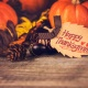 Top Things to Do in Orlando This Thanksgiving Weekend   Nov 21 - 25