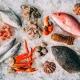 Best Seafood Restaurants in New Port Richey