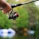 Fishing in Tampa | Offshore, Freshwater, Fishing Charters