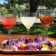 Check Out These Restaurants For The Best Happy Hour in Winter Park
