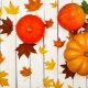 Thanksgiving Events in Gainesville