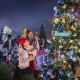 Light Up Your Night at the Disney Springs Tree Trail this Holiday Season