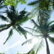 Things To Do in Fort Lauderdale This Weekend | Jan 30 - Feb 2