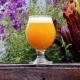 Breweries in Seminole Heights | Grab A Beer in Seminole Heights