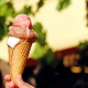 Got A Sweet Tooth? Vote On Your Favorite Ice Cream Shops in Orlando for National Ice Cream Month