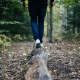 Where To Go Hiking in Tampa | Hiking Trails in Tampa