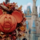Things To Do in Orlando This Weekend | October 15th - 18th