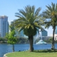 St. Patrick's Day and More Fun Things To Do in Orlando This Weekend | March 19th - 21st