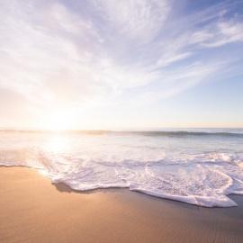 Sanibel Island, Florida | Beautiful Beaches, Hotels, and More