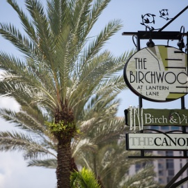 The Birchwood | Boutique Hotel, Lounge and Restaurant Opens in St. Pete