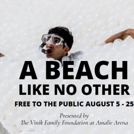 The Beach Tampa is Coming to the AMALIE Arena