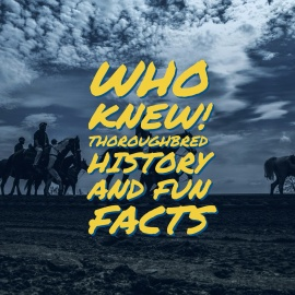 Who Knew! Thoroughbred History and Fun Facts