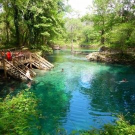 Best Parks in Orlando