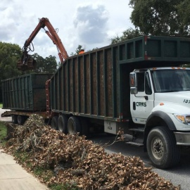 The Scoop on Storm Debris Pick Up in Tampa - Things to Know