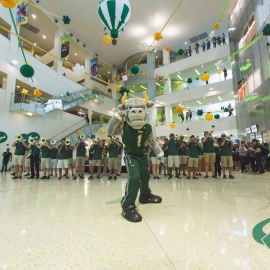 How to Rock Out During USF's Homecoming Week 2017 Before the Bulls Play Cincinnati