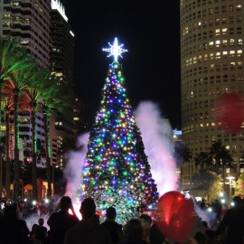 Top 10 Things to Do this Weekend in Tampa Bay 12/1 - 12/3