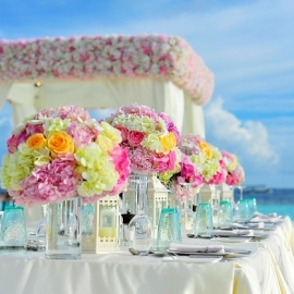 Best Wedding and Event Venues in Tampa