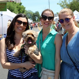 24th Annual Paws in the Park in Downtown Orlando this Saturday