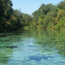 Tubing Near Gainesville | Park & Rental Details