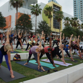 Yoga Studios in Tampa | Relaxing, Healthy Recreation
