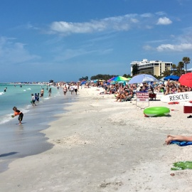 Spring Break in Sarasota | Things to See, Do, and Eat!