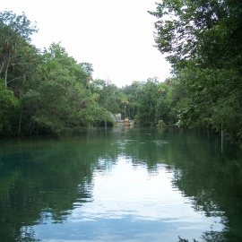 The Homosassa River Lodge Provides Paradise Away from Home