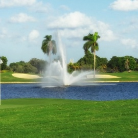 Tee Off At The Best Golf Courses Under $50 in Tampa