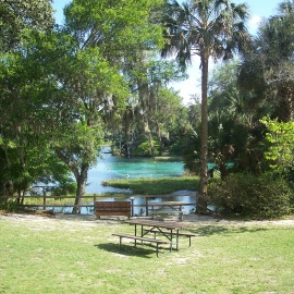 Rainbow Springs State Park in Dunnellon