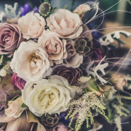 Flower Shops for Mother's Day in Savannah