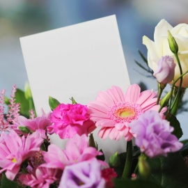 Flower Shops for Mother's Day in Sarasota