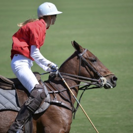 The Sarasota Polo Club at Lakewood Ranch