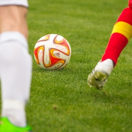 Where to Watch the World Cup in Sarasota