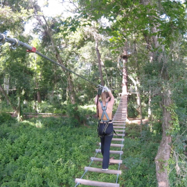 Reach New Heights or Conquer a Fear at TreeUmph!: The Zipline Adventure Course in Brooksville