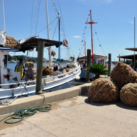 Things to Do at the Sponge Docks in Tarpon Springs