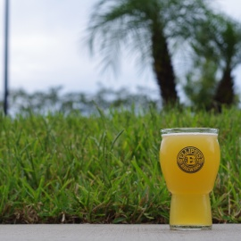 Celebrate National IPA Day on August 2nd With These Local Brews