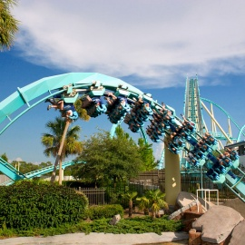 15 Roller Coasters in Florida Providing the Ultimate Adrenaline Rush