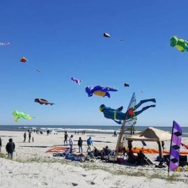 Celebrate the First Weekend of Fall with This List of Things To Do in Daytona