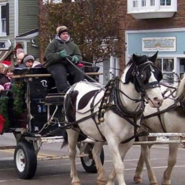 Winter Garden (Sleighs) Holiday Season With Santa Sightings, Carriage Rides, Decor, and More