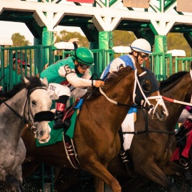 The Stakes Are High at Tampa Bay Downs' Premier Day January 19
