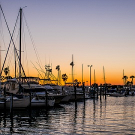 Coolest Events and Things To Do This Weekend in St. Pete, Clearwater, Largo, Dunedin and More!