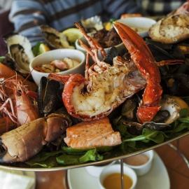 Best Seafood Restaurants in Tampa | Fresh Fish, Oysters, Crab