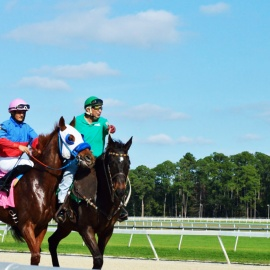 Final Stakes Saturday at Tampa Bay Downs on May 4