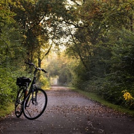 Best Bike Trails in Tallahassee