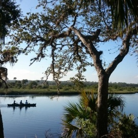 Spend The Day Exploring Nature At These Parks in Daytona Beach