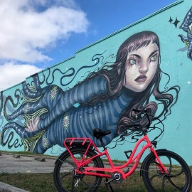 Bike Rentals in St Pete