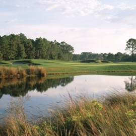 Best Golf Courses in South Walton