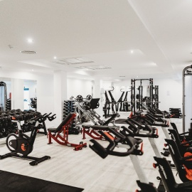 The Best Gyms in Tampa For Newbies!