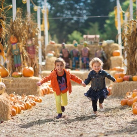 Corn Mazes, Hayrides, and More Festive Fall Events in Cocoa