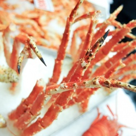 Best Snow Crab Leg Restaurants in Tampa Bay